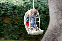 Kids on a chair swing. Two kids swinging standing up on a swing chair, hanging on a  tree Royalty Free Stock Photo