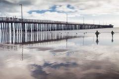 Kids chasing seabirds on a beach. Stock Photos