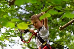 Kids climbing in adventure park. Boy enjoys climbing in the ropes course adventure. Child climbing high wire park. Happy boys playing at adventure park holding Stock Photo