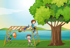 Kids climbing near the tree Royalty Free Stock Photo
