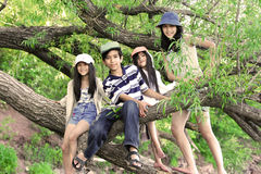 Kids climbing in tree. Kids climbing on branches of large tree Stock Photography