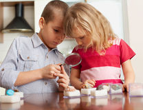 Kids are considering a magnifying glass collection of stones Royalty Free Stock Photo