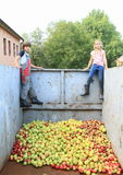 Kids in  container Royalty Free Stock Photos
