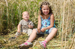 Kids in a Cornfield Royalty Free Stock Images