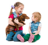 Kids with dachshund Royalty Free Stock Image
