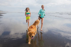 Kids and dog running at beach Royalty Free Stock Photo