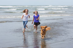 Kids and dog running at beach Royalty Free Stock Image