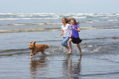 Kids and dog running at beach Stock Photos