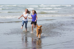 Kids and dog running at beach Royalty Free Stock Photography