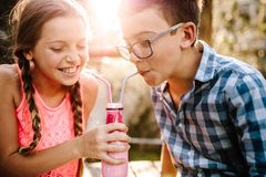Kids drinking smoothie together stock photos