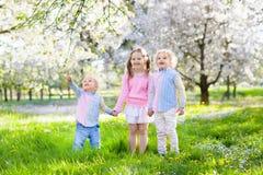 Kids on Easter egg hunt in blooming garden. Stock Photos