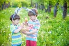 Kids on Easter egg hunt in blooming spring garden. Children sear. Ching for colorful eggs in flower meadow. Toddler boy and his brother friend kid boy play Royalty Free Stock Image