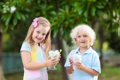 Kids eating ice cream. Child with fruit dessert. Stock Photo