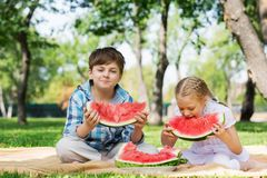 Kids eating watermelon Stock Image