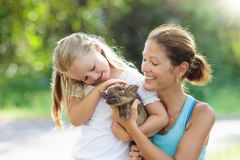 Kids and farm animals. Child with baby pig at zoo. Stock Photography