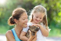 Kids and farm animals. Child with baby pig at zoo. Kids play with farm animals. Child feeding domestic animal. Young mother and little girl holding wild boar royalty free stock images