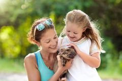 Kids and farm animals. Child with baby pig at zoo. Kids play with farm animals. Child feeding domestic animal. Young mother and little girl holding wild boar stock photos