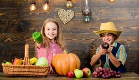Kids farmers girl boy vegetables harvest. Family farm. Children presenting farm harvest wooden background. Siblings. Having fun. Farm market. Farming teaches stock image