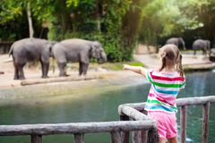 Kids feed elephant in zoo. Family at animal park. Family feeding elephant in zoo. Children feed Asian elephants in tropical safari park during summer vacation in royalty free stock images