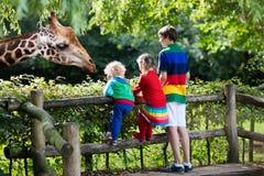 Kids feeding giraffe at the zoo stock photos