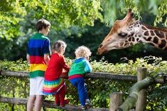 Kids feeding giraffe at the zoo royalty free stock image