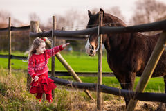 Kids feeding horse on a farm. Family on a farm in autumn. Kids feed a horse. Outdoor fun children. Little girl playing with pets. Child feeding animal on a ranch stock images