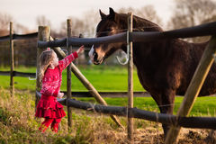 Kids feeding horse on a farm. Family on a farm in autumn. Kids feed a horse. Outdoor fun children. Little girl playing with pets. Child feeding animal on a ranch Stock Photo