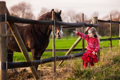 Kids feeding horse on a farm. Family on a farm in autumn. Kids feed a horse. Outdoor fun children. Little girl playing with pets. Child feeding animal on a ranch Stock Photos