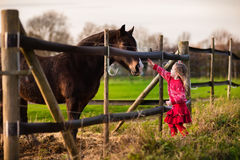 Kids feeding horse on a farm. Family on a farm in autumn. Kids feed a horse. Outdoor fun children. Little girl playing with pets. Child feeding animal on a ranch royalty free stock images