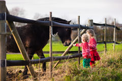 Kids feeding horse on a farm Stock Images