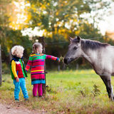 Kids feeding horse on a farm. Family on a farm in autumn. Kids feed a horse. Outdoor fun children. Toddler boy and girl playing with pets. Child feeding animal Stock Photo