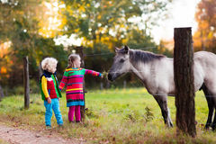 Kids feeding horse on a farm. Family on a farm in autumn. Kids feed a horse. Outdoor fun children. Toddler boy and girl playing with pets. Child feeding animal Royalty Free Stock Photo