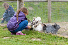 Kids feeding rabbits Royalty Free Stock Photos
