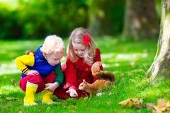 Kids feeding squirrel in autumn park Stock Photos