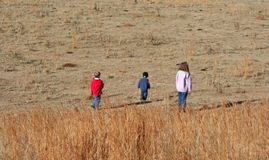 Kids in field. Three children playing in a field Stock Photography