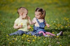 Kids in the field. Kids in the flower field Stock Photos