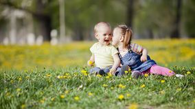 Kids in the field royalty free stock photo