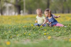 Kids in the field Stock Images