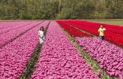 Kids in a flowerfield Stock Image
