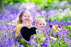 Kids with flowers and chalk board Royalty Free Stock Images