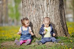 Kids in the forest Royalty Free Stock Images