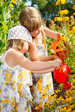 Kids in the garden Stock Photo