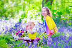 Kids in a garden with bluebell flowers Stock Images