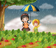Kids in the garden when it is raining. Illustration Royalty Free Stock Image