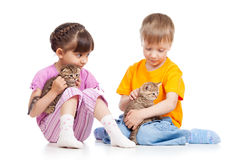 Kids girl and boy stroke kittens Stock Images