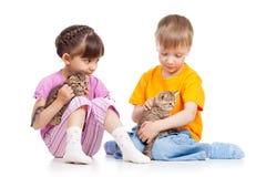 Kids girl and boy stroke kittens Stock Images