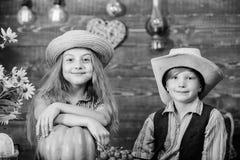 Kids girl boy wear hat celebrate harvest festival rustic style. Celebrate harvest festival. Children near vegetables stock photos