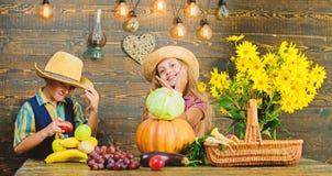 Kids girl boy wear hat celebrate harvest festival rustic style. Celebrate fall traditions. Elementary school fall stock photo