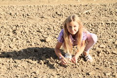 Kids - girls sowing on field Stock Photography