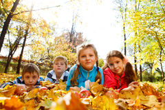 Kids group in  park. Kids group in autumnal park Royalty Free Stock Photo